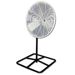 Where to find Fan, Floor 36  White in Columbia
