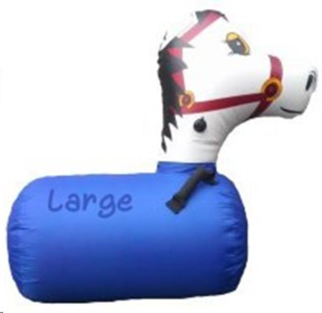 Where to find Inflatable, Pony set of 2 in Columbia