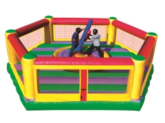 Rental store for Inflatable, Gladiator Combo in Columbia MO