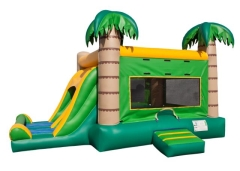 Rental store for Inflatable, Tropical Combo in Columbia MO